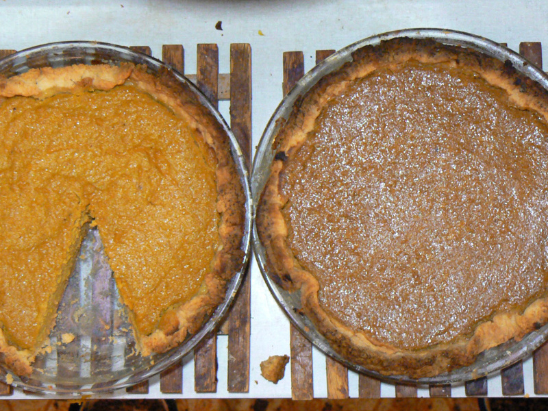 Freshly baked homemade pumpkin pies