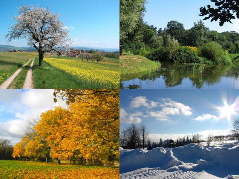 Four seasons in Korea