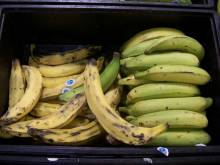 Crate of plantains