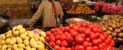 Fruit vendor in Aswan Souk, Egypt